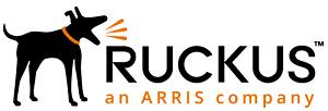 Ruckus Wireless Networking by NETCONFIG